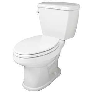 "15-1/2"" H, 12"" Rough-in, 1.6 GPF, White, Vitreous China, Floor Mount, Elongated, Bowl For Avalanche Toilet"