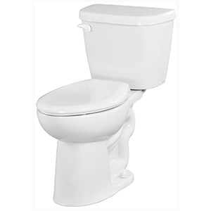 "29-3/8"" X 17-1/2"" X 30-1/8"", 12"" Rough-in, 16-3/8"" Bowl Height, 1.6 GPF, Color Matched Metal Tank Lever, White, Vitreous China, Floor Mount, 2-piece, Elongated Bowl, Toilet"