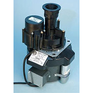"1-1/2"" X 1"", FPT X MPT, 115 VAC, 2.2 A, 1/8 HP, 600 GPH, 1670 RPM, Direct Mount, Drain Pump"